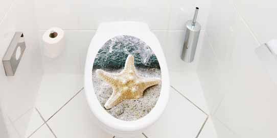 WC-Deckel