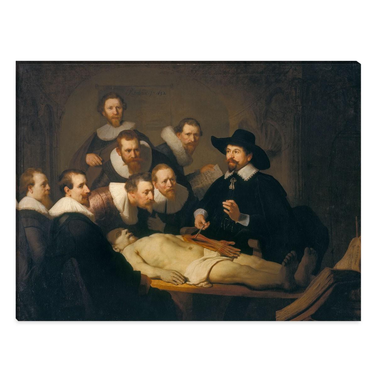 Rembrandt - die Anatomiestudie