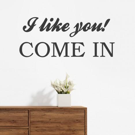 Wandtattoo Spruch - I like you come in