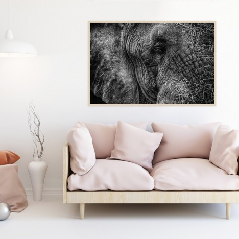 Poster Elefant Herbert mit Rahmen