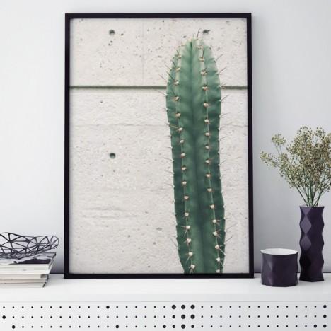 Poster Kaktus vor Beton