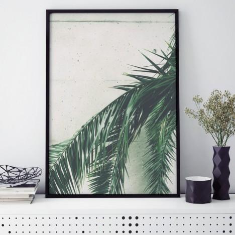 Poster Palmenwedel vor Beton, mit Rahmen