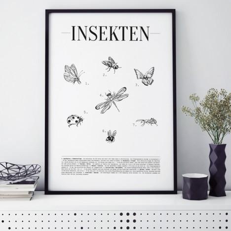 Poster Insekten