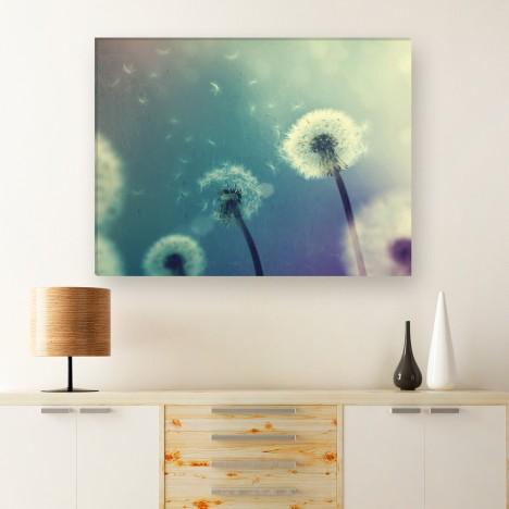 Leinwandbild - Pflanze  - Blume