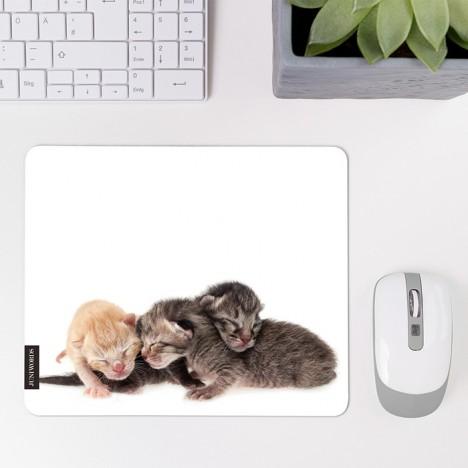 Mousepad Katzenbabys