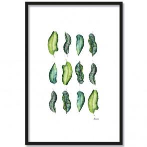 Poster Blätter 3 x 4