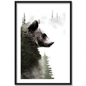 forest bear poster bär wald