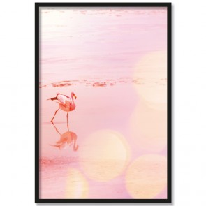 Poster Flamingo in Natur
