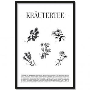 Poster Kräutertee