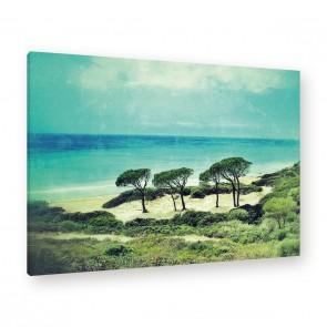 Leinwandbild - Grün - Palmen - Palme