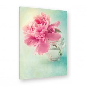 Leinwandbild - Pink - Rosa - Blume