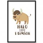 Poster Halo i bims 1 Bimson, mit Rahmen