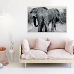 Poster Elefantenfamilie, mit Rahmen