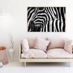 Poster Zebra Eye, mit Rahmen