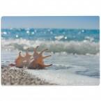 Glasschneidebrett Meer mit Muschel