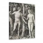 Albrecht Dürer - Adam und Eva