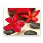 Leinwandbild - Entspannung - Zen