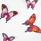 Wandtattoo 3D - Schmetterlinge - Pinktöne