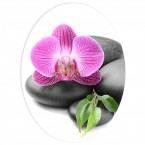 WC Aufkleber Orchidee