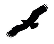 Vogelschutz Aufkleber